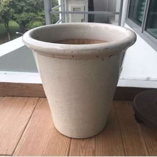 Ceramic Flower Pot Plants 30cm