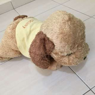 Soft Toy ~ Puppy