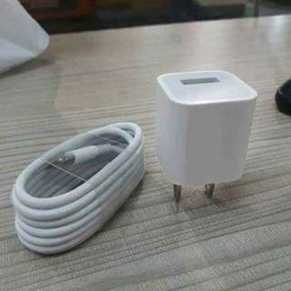 Iphone charger (lightning cable)