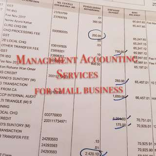 Management Accounting Service for small business