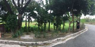 Lot for sale in Greenland Cainta