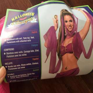 Arabian princess belly dancer party costume