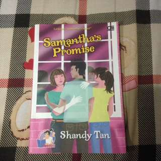 Novel Samantha's Promise