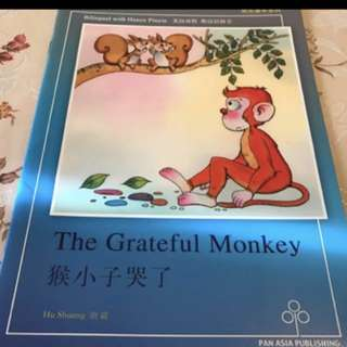 2 Children bilingual Storybooks