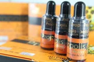 Propolis - GMP & Halal Certified