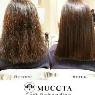 MUCOTA SOFT REBONDING best maintenance treatment for hair