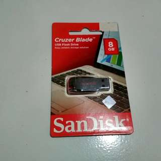 Flashdisk New