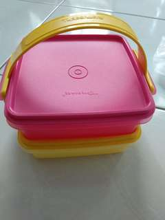Small Carry Tupperware