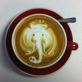 Elephant Coffee, Black Ivory Coffee