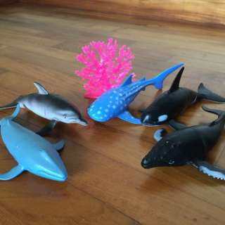 children kids toys dolphin whales