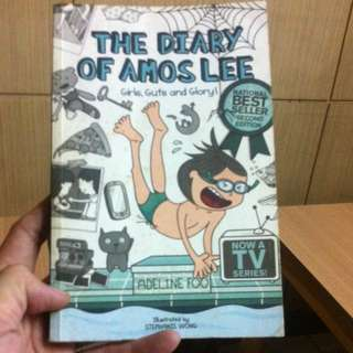 The Diary Of Amos Lee - Adeline Foo