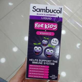 英國Sambucol天然黑接骨木糖漿