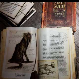 Arthur Spiderwick field guide book