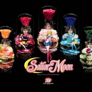 情人節禮物生日禮物Lesean Flower (Sailor Moon)