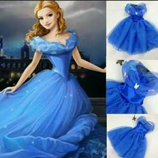 Pre order Cinderella Cosplay dress for 3 to 10 years old children girls