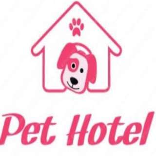 DOG BIRD Hamster staycation cheapest Affordable Pet Boarding Pet Sitter Walker Walking Service ( Located At Kovan Condo Walking Distanceu Near MRT) Suitable For Those Away Overseas Vacation Holiday Doggy Dog BIRD hamster board hotel