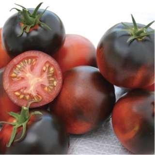 Organic Artisan Tomato 'Indigo Apple' (Solanum Lycopersicum) Vegetable Heirloom, 10 Seeds, Indeterminate