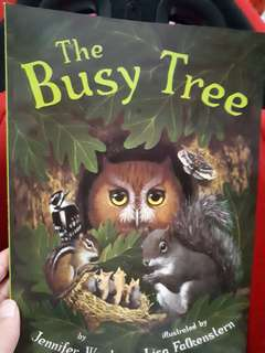 Picture book: The Busy Tree