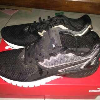 JUAL RUGI!!! Puma Ignite Dual Mesh (black)