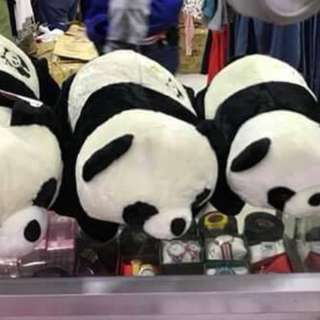 Panda Stuffed Toy