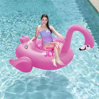 Flamingo Floaters