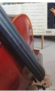 Cello 4/4 Rental