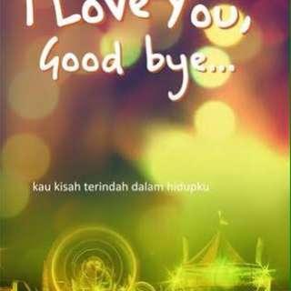 I Love U, Goodbye (Novel)