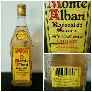 0303 BN Monte Alban