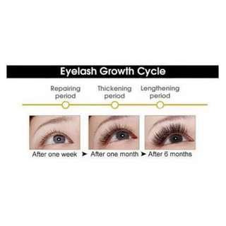 SkinSational Eyelash Grower Serum 10ml