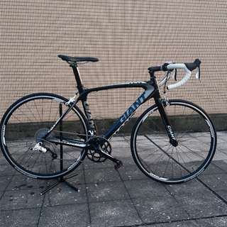 GIANT TCR COMPOSITE 2 (M)