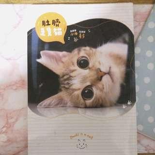 🐱貓咪書系列 > 肚臍是隻貓