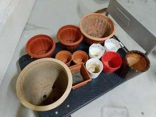 13 plant pots for $10