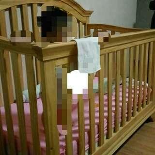 Cuddle Bug Crib