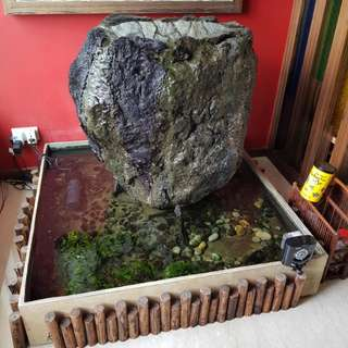 Water feature, pond, tank, Balinese