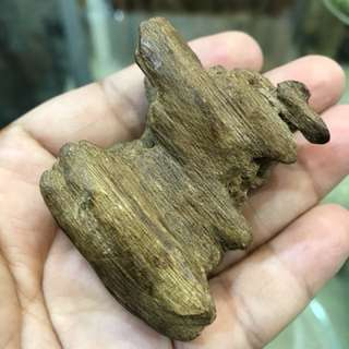 🌿Natural Agarwood Sinking 🍂沉香静舍🌿