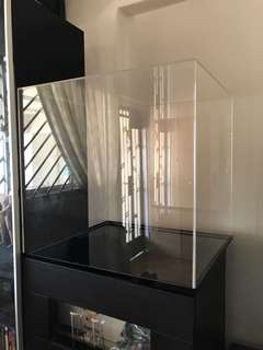 BIG Custom Acrylic Display Case CHEAP