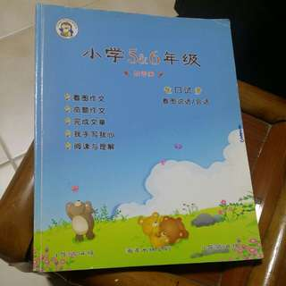 Chinese Books for 5&6