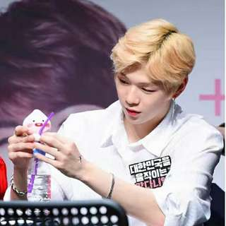 【Korea Buying Service 4/20-29】Wanna One Kang Daniel Kakao Friends Magnetic Plush Toys(mini)