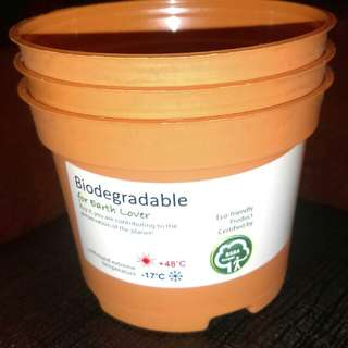 Small biodegradable planting pots (10/pack)