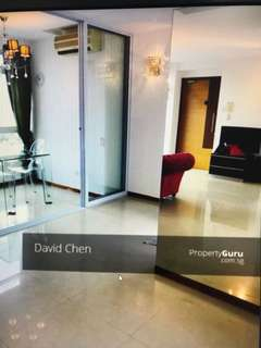 Rare penthouse in Rocca Balestier for rent!