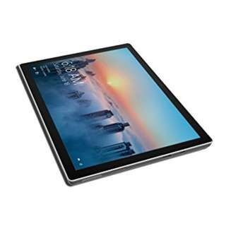 Surface Pro (newest version) 1 TB / Intel Core i7 / 16GB RAM