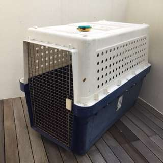Dog travel crate-large