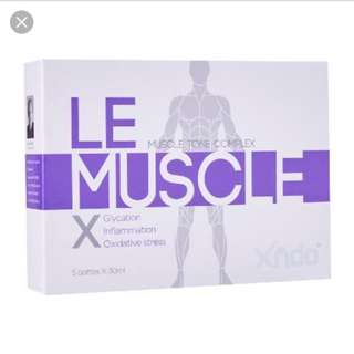 Xndo le muscle
