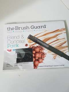 Brush guard