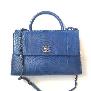 Chanel coco medium phyton Blue electric #23