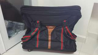 Expendable Travel Bag