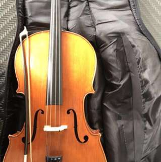 Eurostrings M400 Orchestra Model 1/2 Size