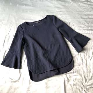 Zara Fluted Sleeve Top