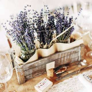 💐YourStalkMarket - Dried Lavender Flower Stalk