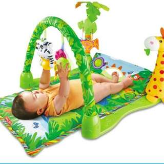 Rainforest Playgym